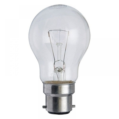 Light Bulb incandescent 100 W